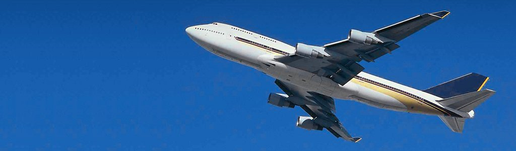 domestic-airlines-header
