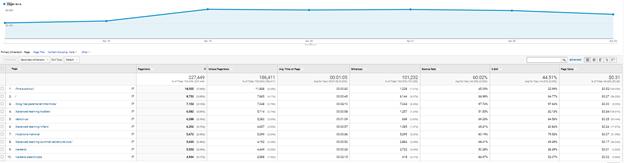 Google Analytics Page Views